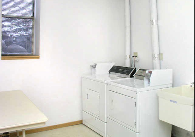 760 Mount Curve Apt. - Laundry Room 2