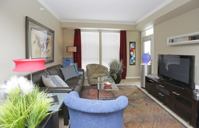 Lyndale Plaza - Living Room 2