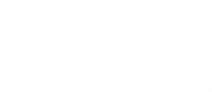 Michael Development